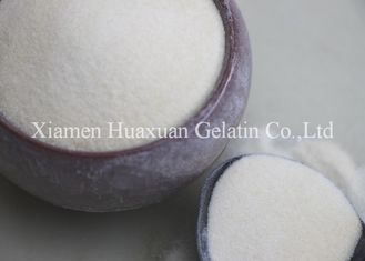 China Gelatina Halal Hydrolyzed Podwer do queijo comestível fábrica